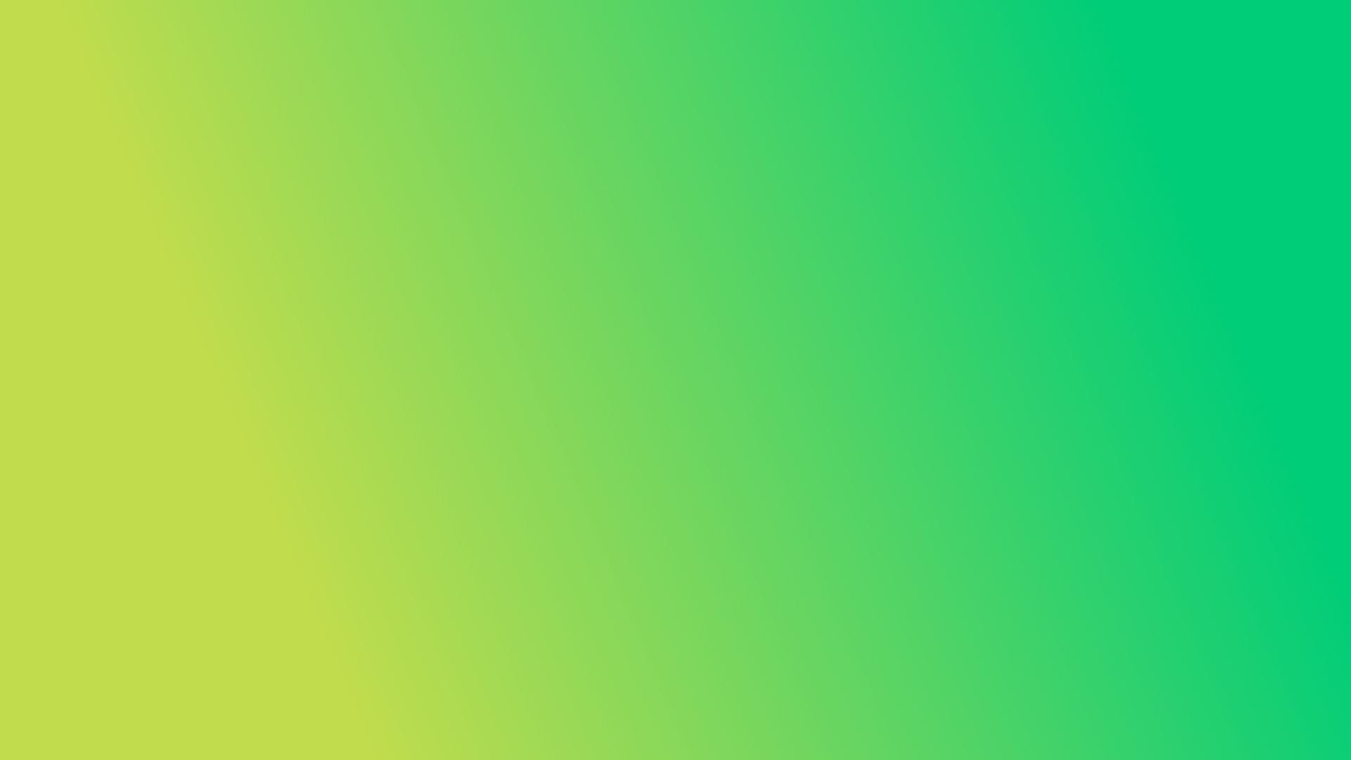 Corporate Design und Farbschema